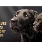 Produits pour animaux en promo ! (jusqu'au 09/02/2020)