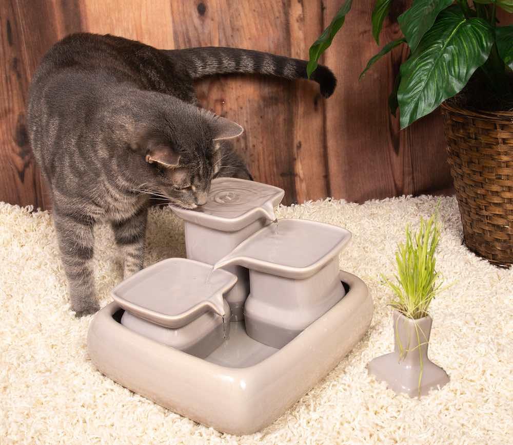 Fontaine à eau pour chats Miaustore - Grey