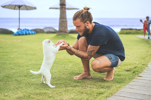 Y a-t-il des bienfaits à posséder un animal de compagnie ?