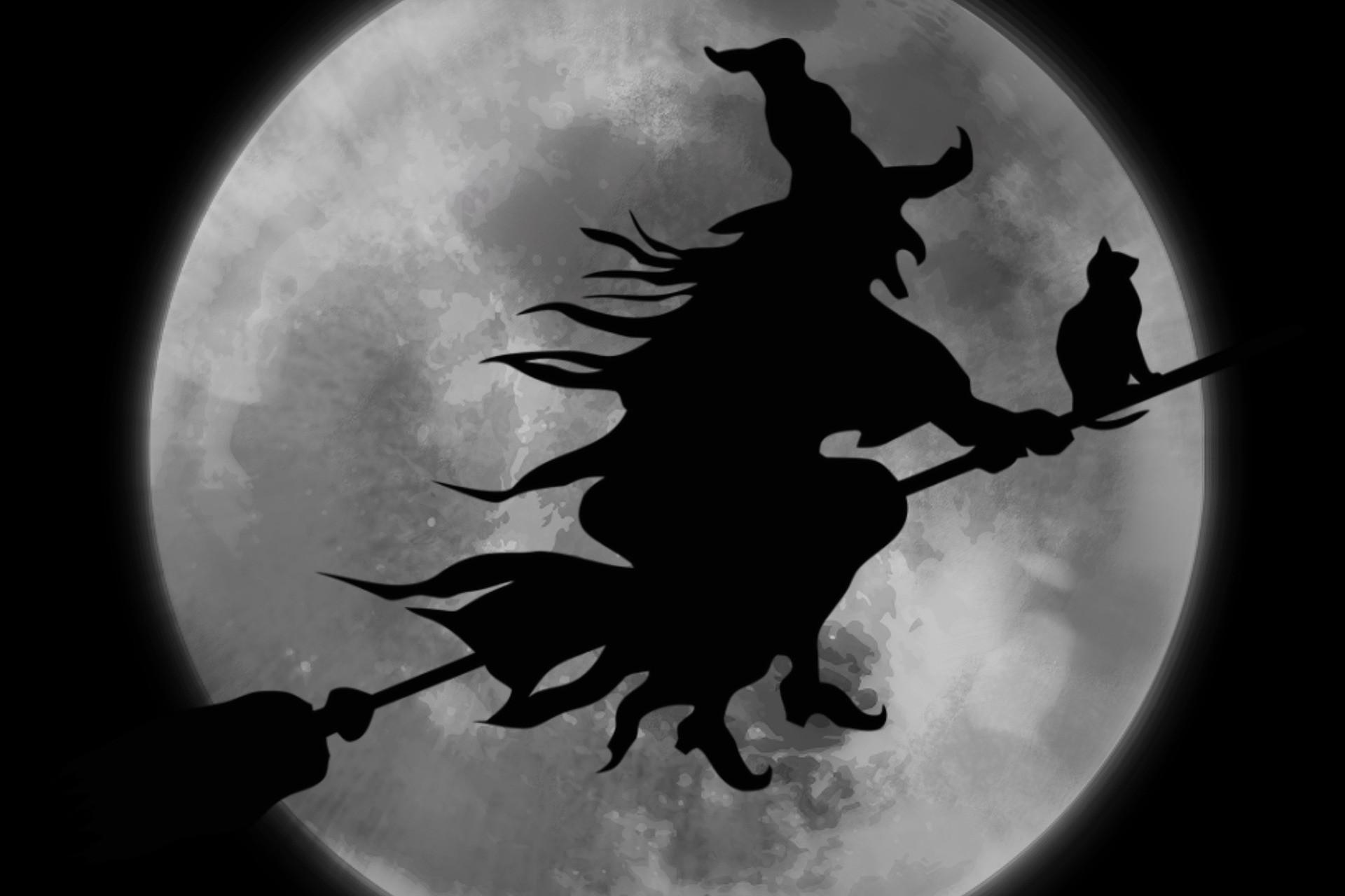 Fonds D Ecran Animaux D Halloween