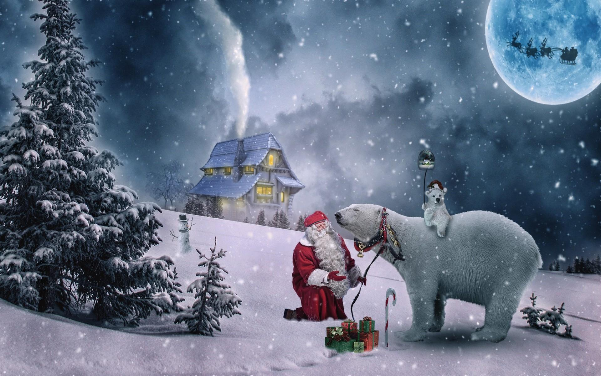 Fonds D Ecran Animaux De Noel