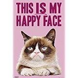 Poster Affiche Animaux rigolos Chat Grumpy cat