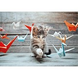 Poster Affiche Animaux Chaton Origami