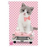Poster Affiche Animaux Chaton Voiture rose