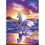 Poster Affiche Nature Plage Animaux Cheval Soleil levant