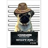 Poster Affiche Animaux Chien Carlin criminel