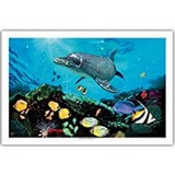 Poster Affiche Animaux Dauphin Poissons tropicaux