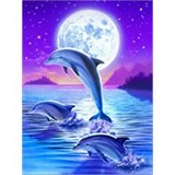 Poster Affiche Animaux Dauphins Lune