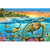 Poster Affiche Animaux marins Tortues mer