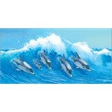 Poster Affiche Animaux Dauphins Vague Surf