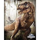 Poster Affiche Animaux Dinosaures T-rex