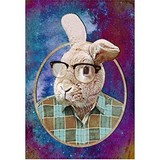 Poster Affiche Animaux rigolos Lapin geek
