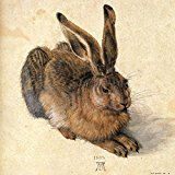 Poster Affiche Animaux Lapin Lièvre Durer