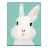Poster Affiche Animaux Lapin blanc mignon