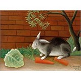 Poster Affiche Animaux Lapin Carotte Rabbit