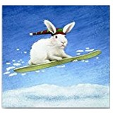 Poster Affiche Animaux Lapin Snowboard