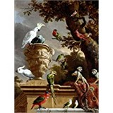 Poster Affiche Animaux Oiseaux Menagerie Hondecoeter