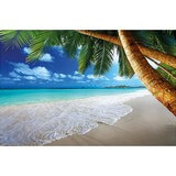 Poster Affiche Nature Plage Caraibes