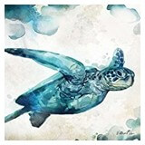 Poster Affiche Animaux Reptile Tortue Aquarelle