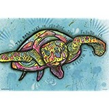 Poster Affiche Animaux Reptile Tortue Pop-Art