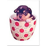 Poster Affiche Animaux rigolos Humour Chiot Tasse