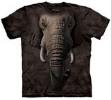 T-shirts Animaux Eléphant