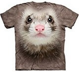 T-shirts Animaux Furet