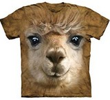 T-shirts Animaux Lama