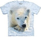 T-shirts Animaux Ours blanc polaire