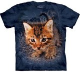 T-shirts Animaux Chat Capitaine