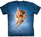 T-shirts Animaux Chat roux