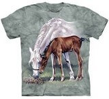 T-shirts Animaux Chevaux Broute
