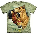 T-shirts Animaux Chevaux Famille