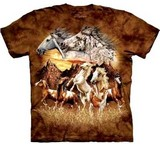 T-shirts Animaux Chevaux 15