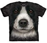 T-shirts Animaux Chien Border Collie