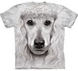 T-shirts Animaux Chien Caniche