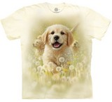 T-shirts Animaux Chien Chiot Labrador