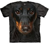 T-shirts Animaux Chien Teckel