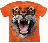 T-shirts Animaux Félins Tigre