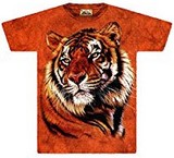 T-shirts Félins Tigre orange