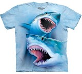T-shirts Animaux Mer Requin blanc