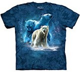 T-shirts Animaux Ours polaires
