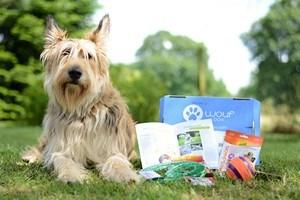 Woufbox : la box (boîte-cadeau) pour chiens